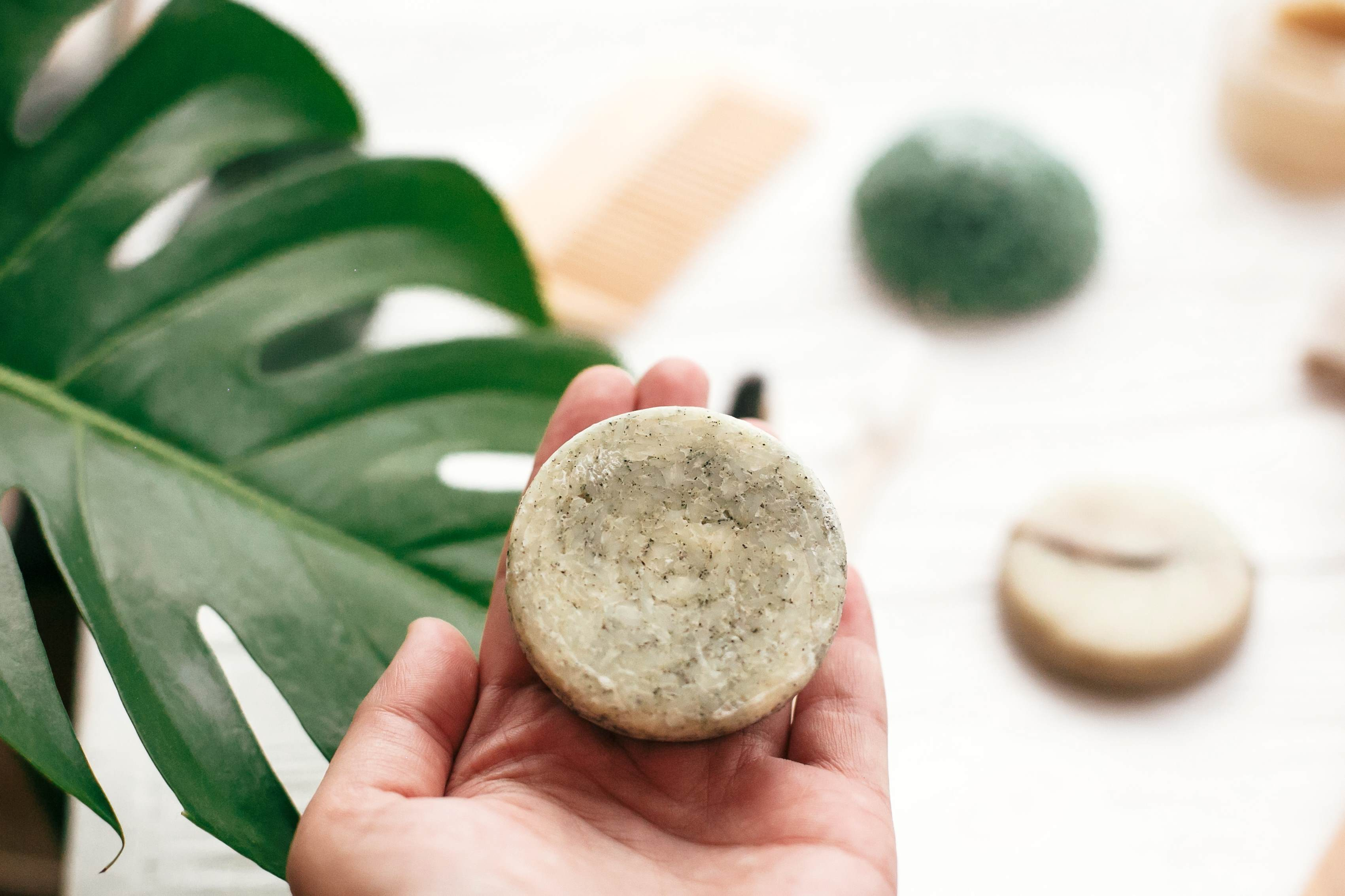 A hand holding a shampoo bar in the foreground with a palm leaf in the background